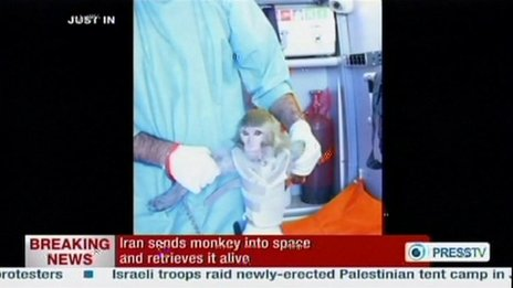 monkey space iran