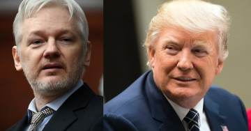 Hypocrisy: Trump Lawyers Keep Defending WikiLeaks, Yet His Secretary of State Pick Wants Assange's Head on a Platter